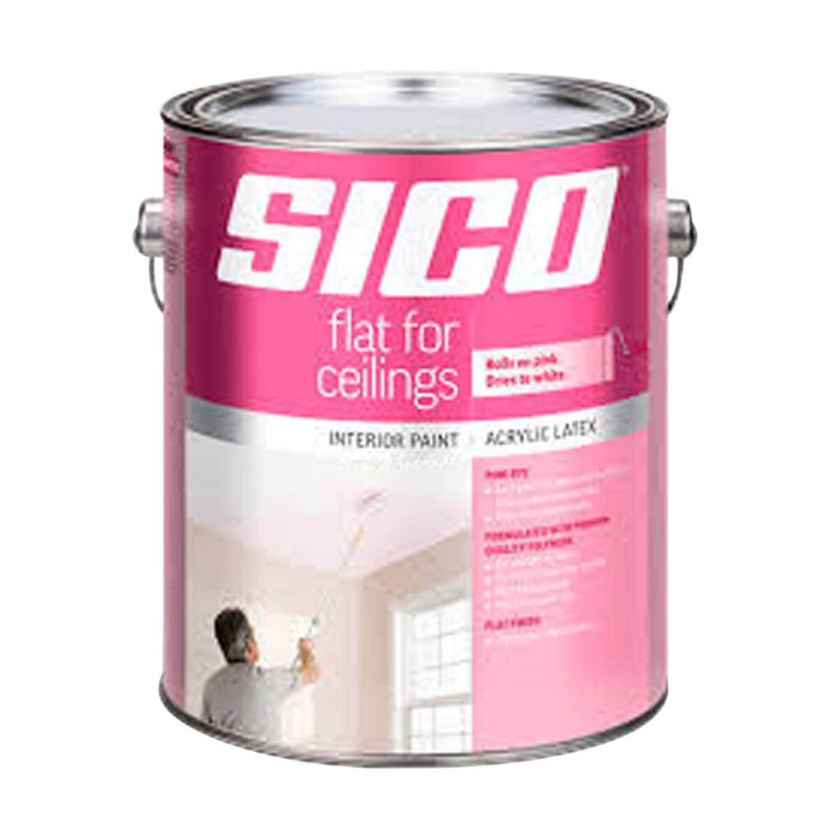 Flat for Ceilings Finish w/ Pink Dye Interior Latex Paint - 3.78L - White