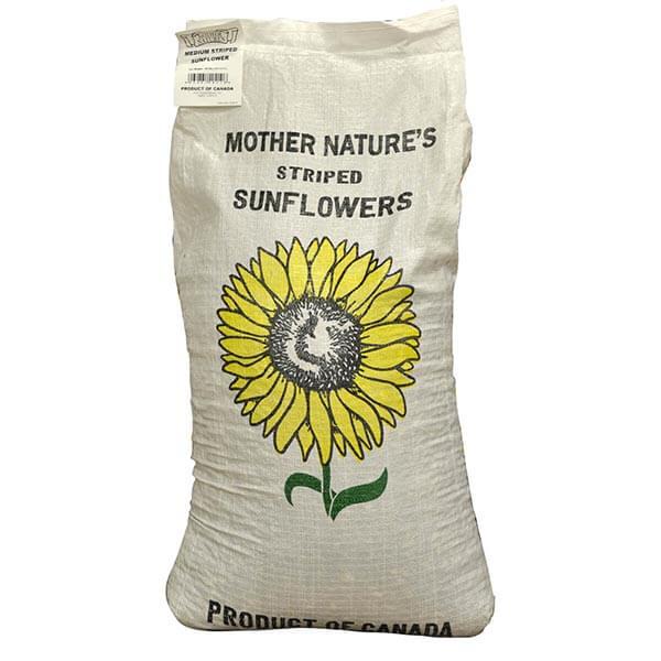 Striped Sunflower Seeds - 18.1 kg