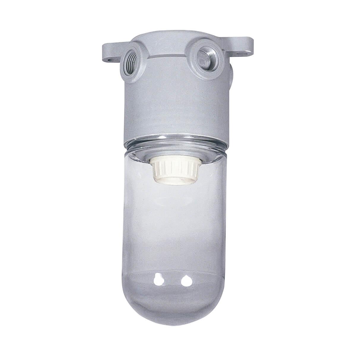 PVC Conduit Nonmetallic Vapor-Proof Incandescent Fixture - Clear Globehub