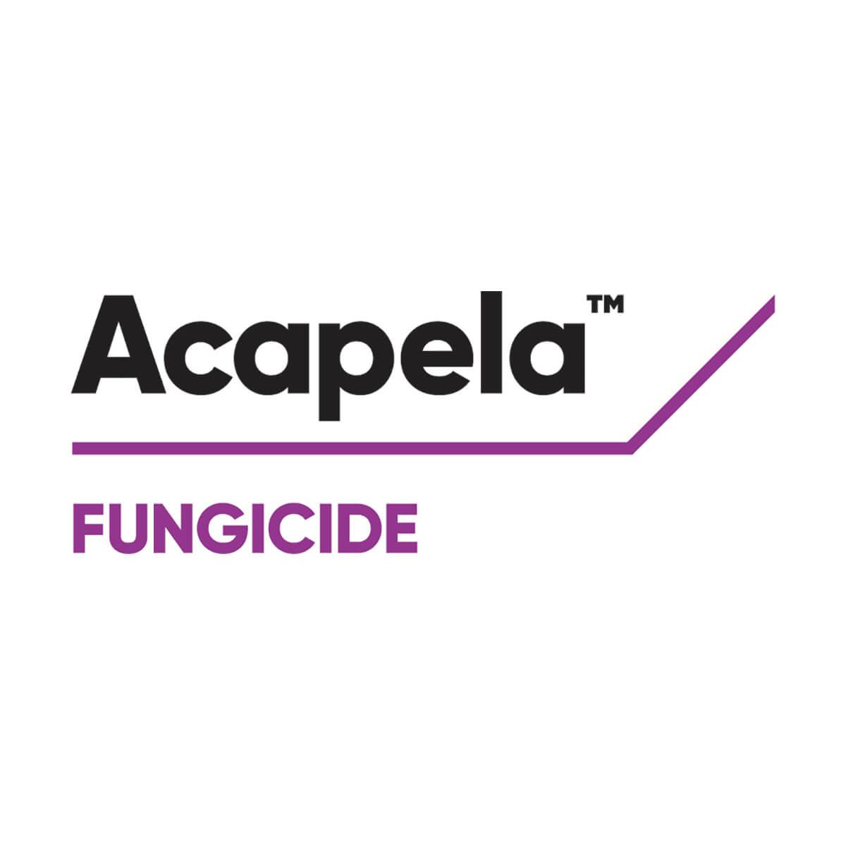 ACAPELA - 9.6 L Jug