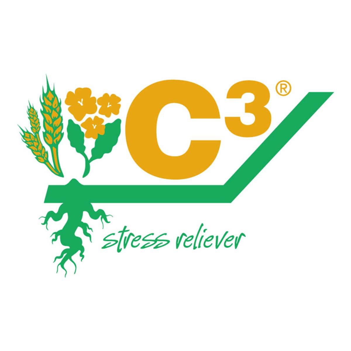 C3 10L