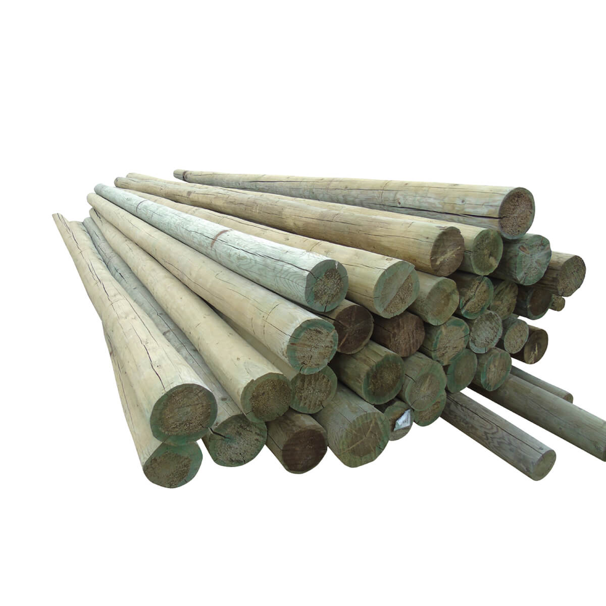 Peeled Fence Poles - Blunt - 6-in x 10-ft