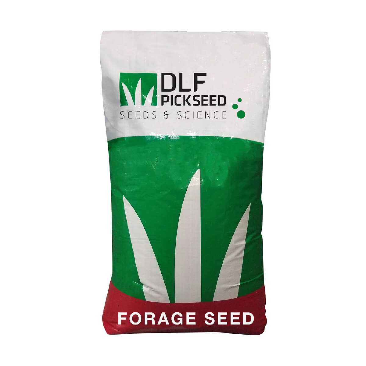 Common Meadow Brome - 25 kg