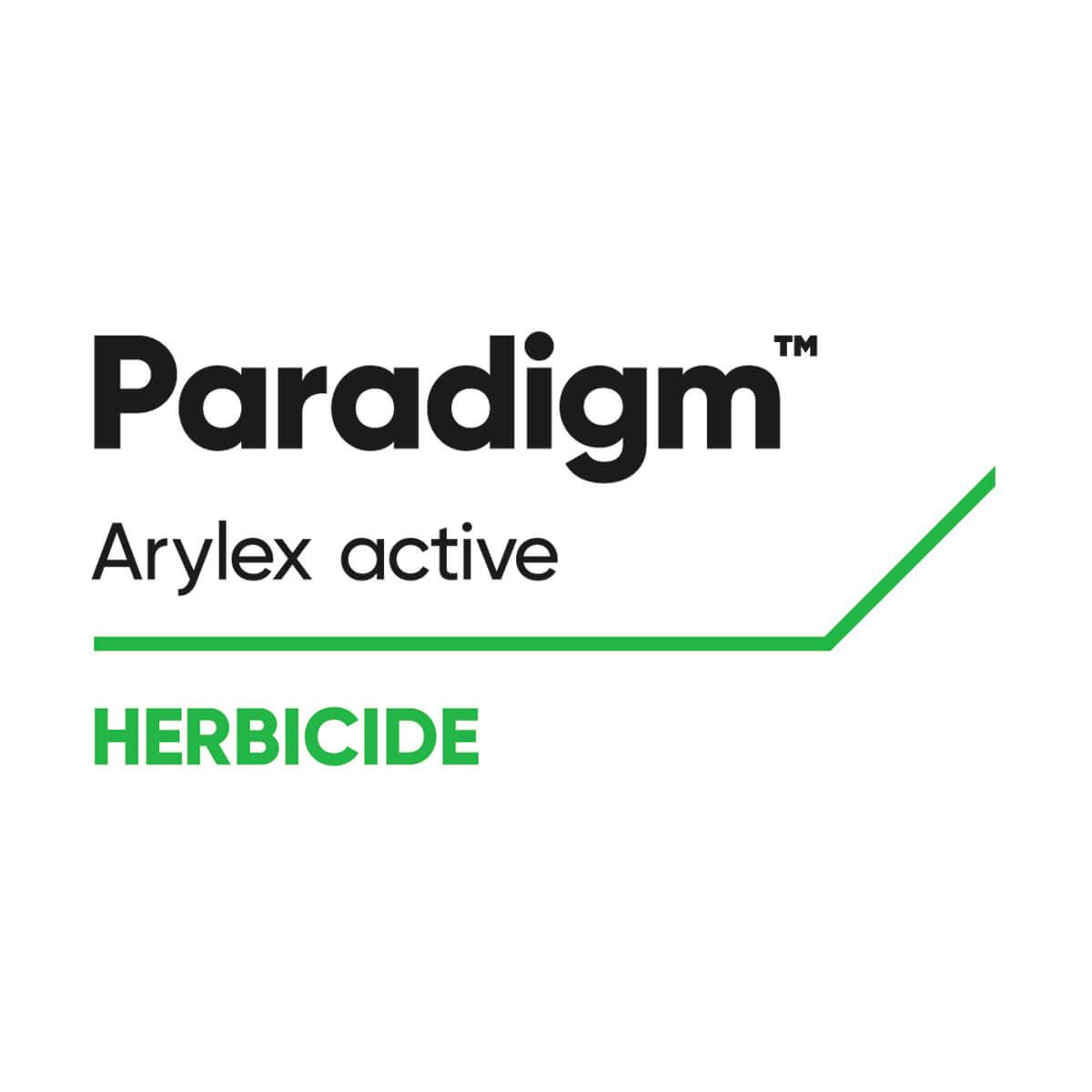 PARADIGM PRE - 0.8 kg