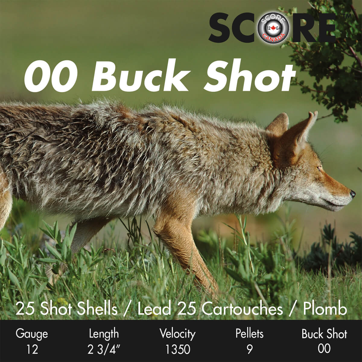 00 Buck Shot Ammo 2-3/4""