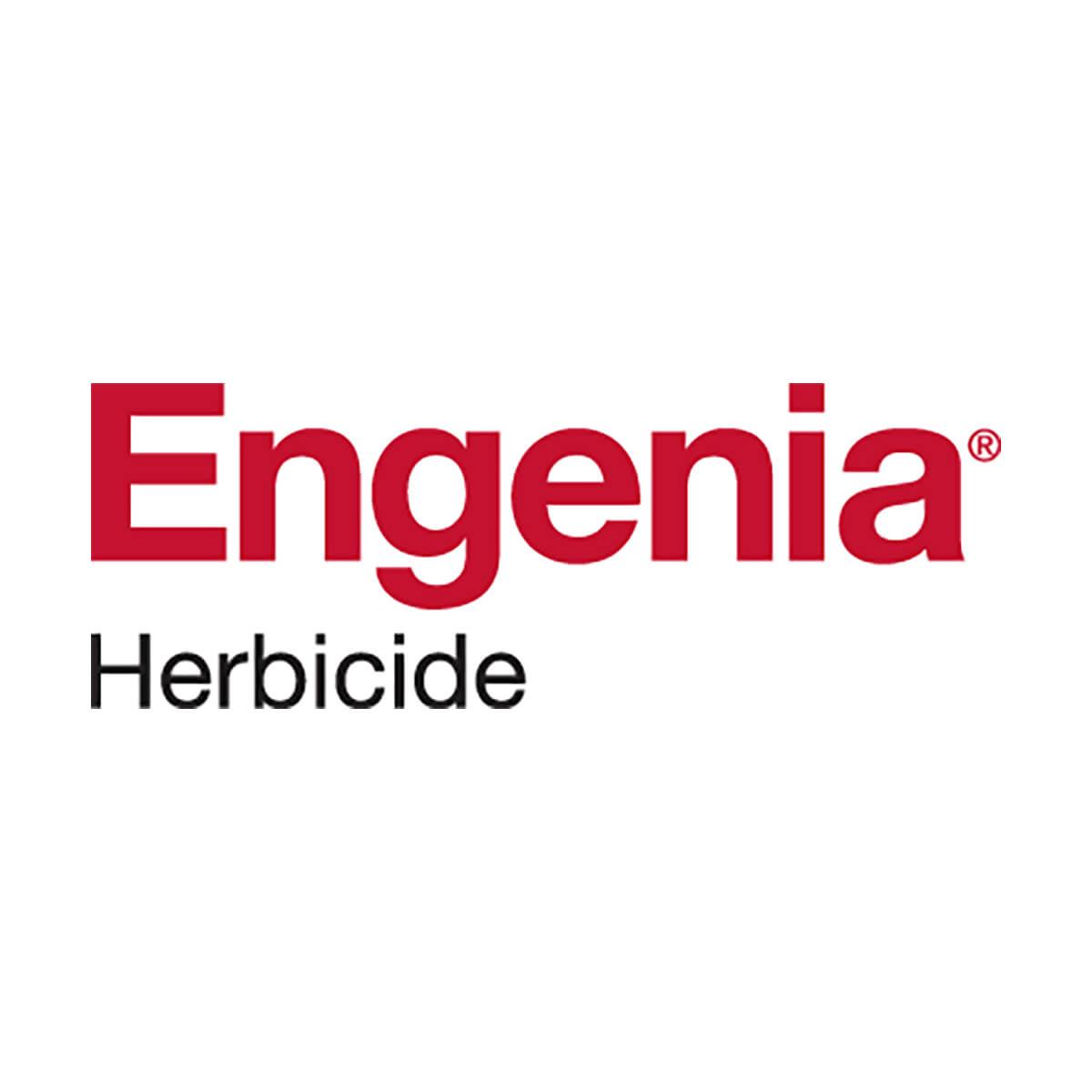 Engenia ™ - 121.2 L Drum