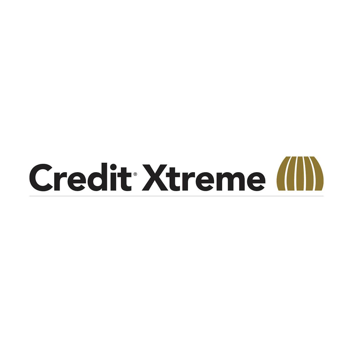 Credit® Xtreme - 900 L Tote