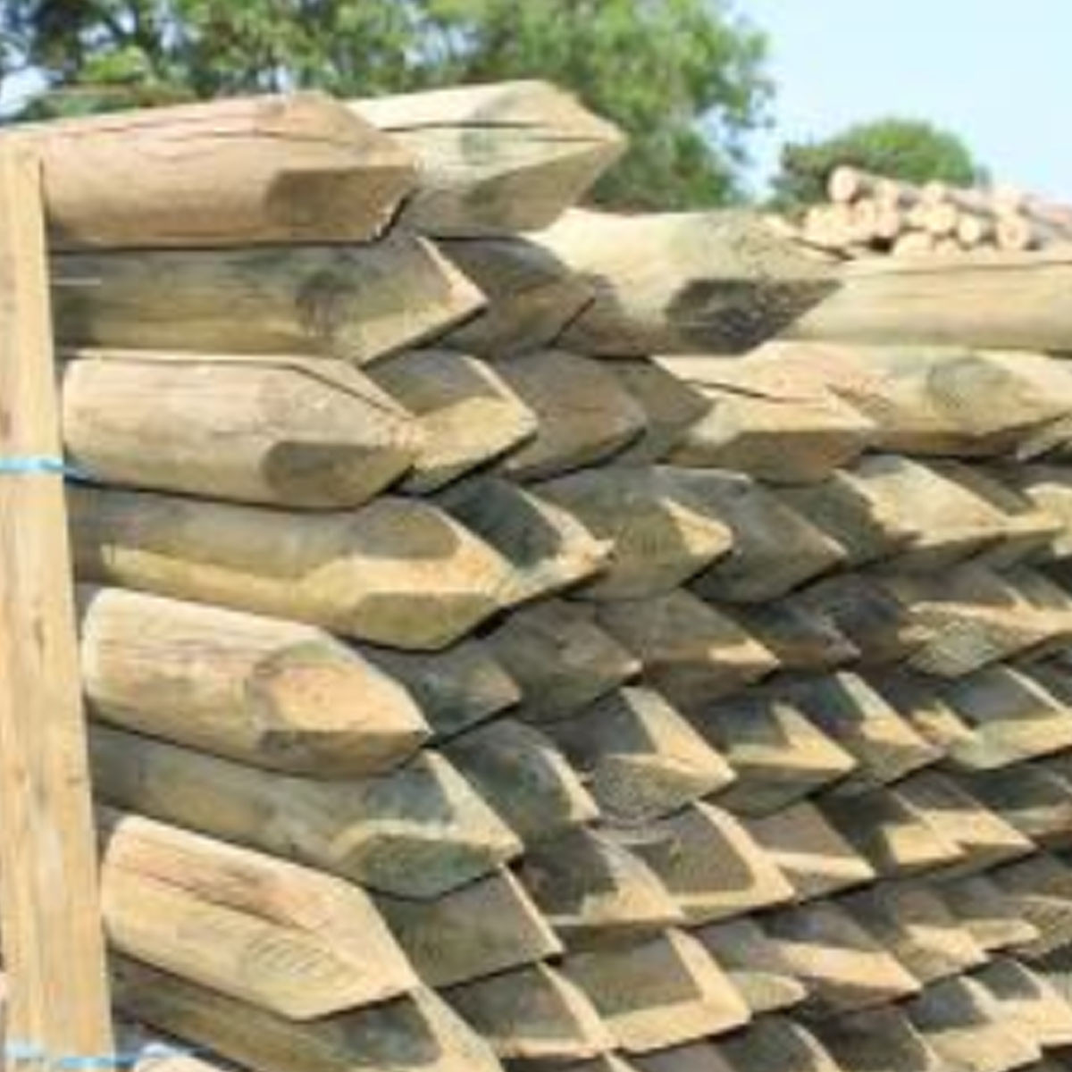Peeled Fence Posts - Pointed - 4-in x 7-ft
