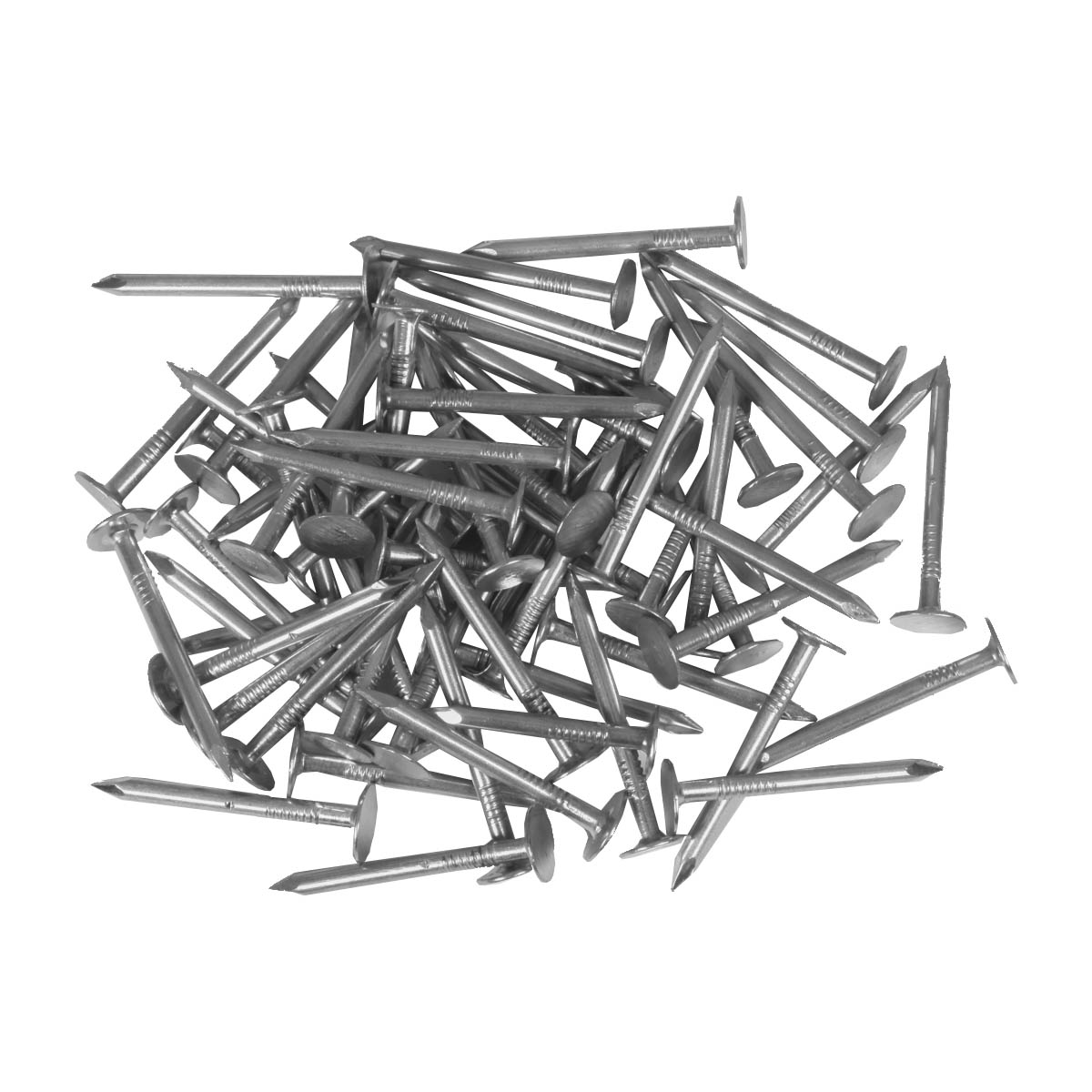 Roofing Nails  - 1-1/4-in