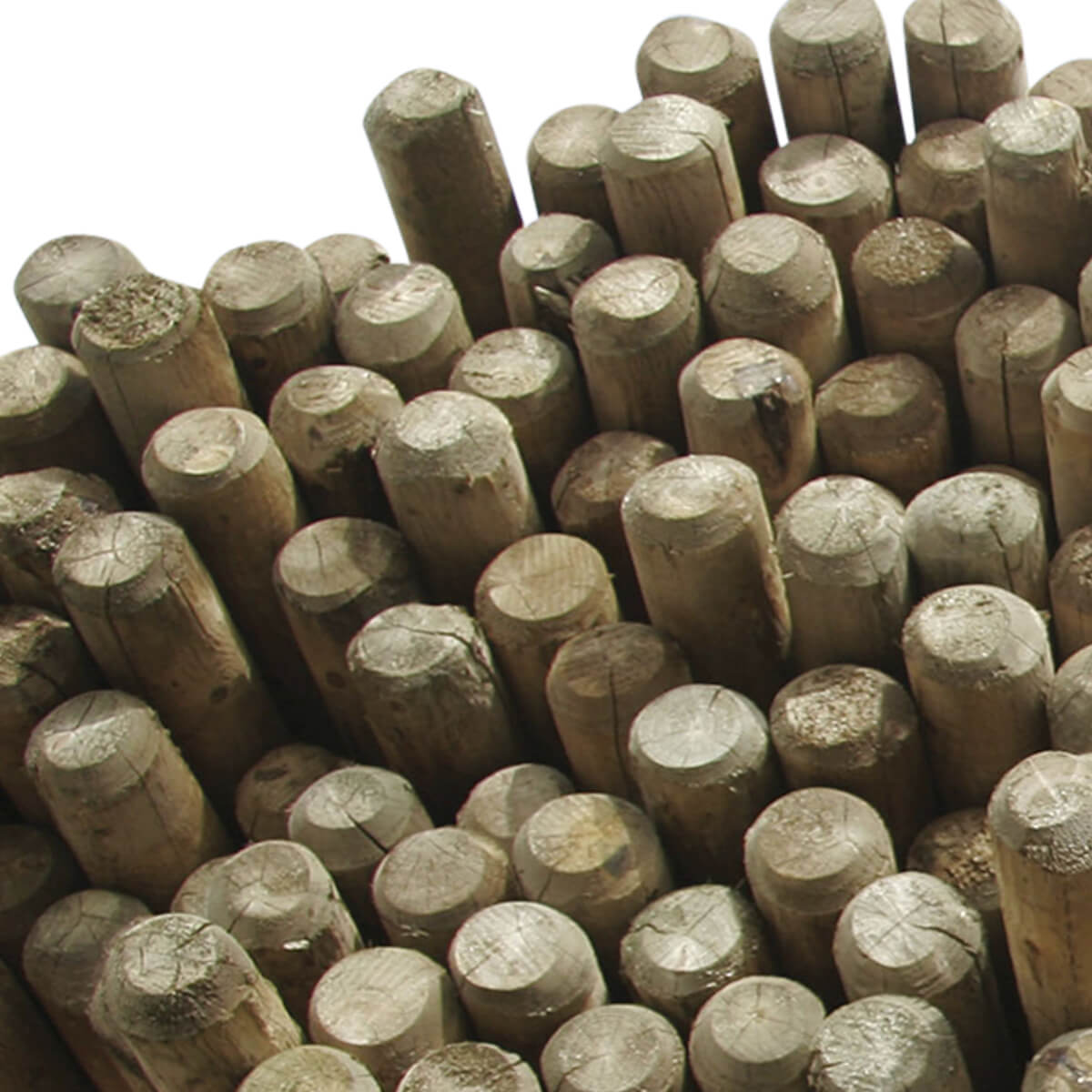 Dowelled Fence Poles Blunt - 5.25-in x 12-ft