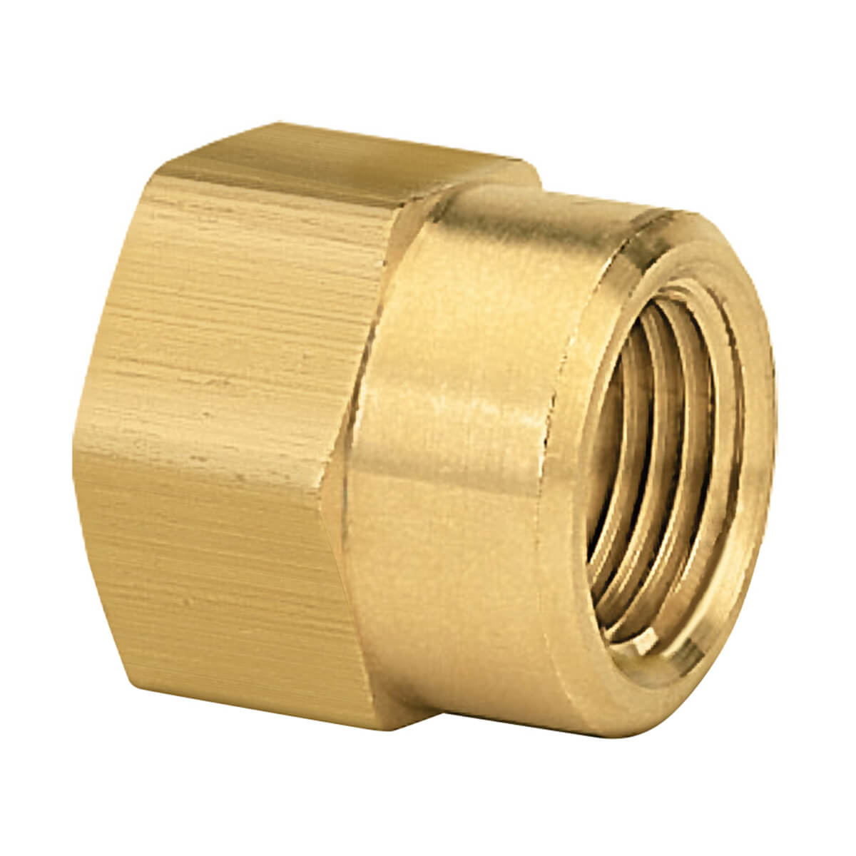 Brass Double Female Connector