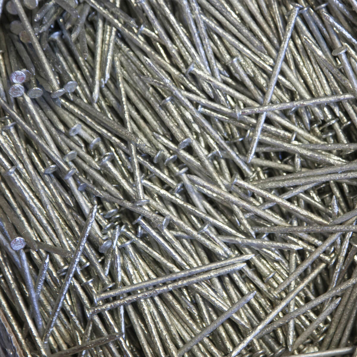Galvanized Hot Dipped Nails