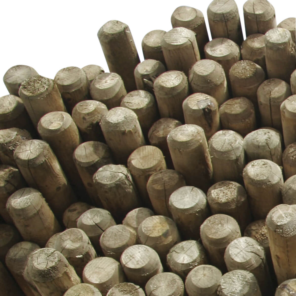 "Dowelled Fence Poles Blunt - 5.25"" x 16'"