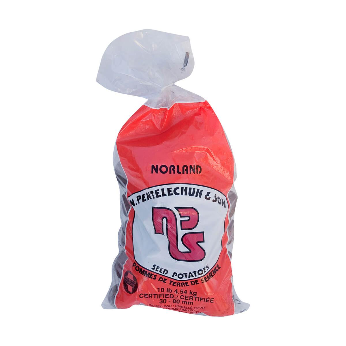 Norland Seed Potatoes - 5lb