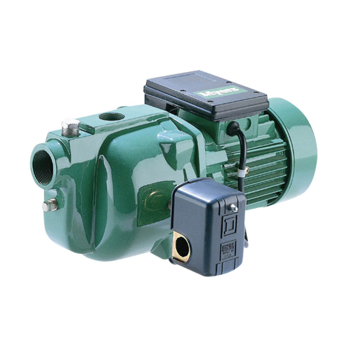 Myers 1 hp Shallow Well Jet Pump - QD100S