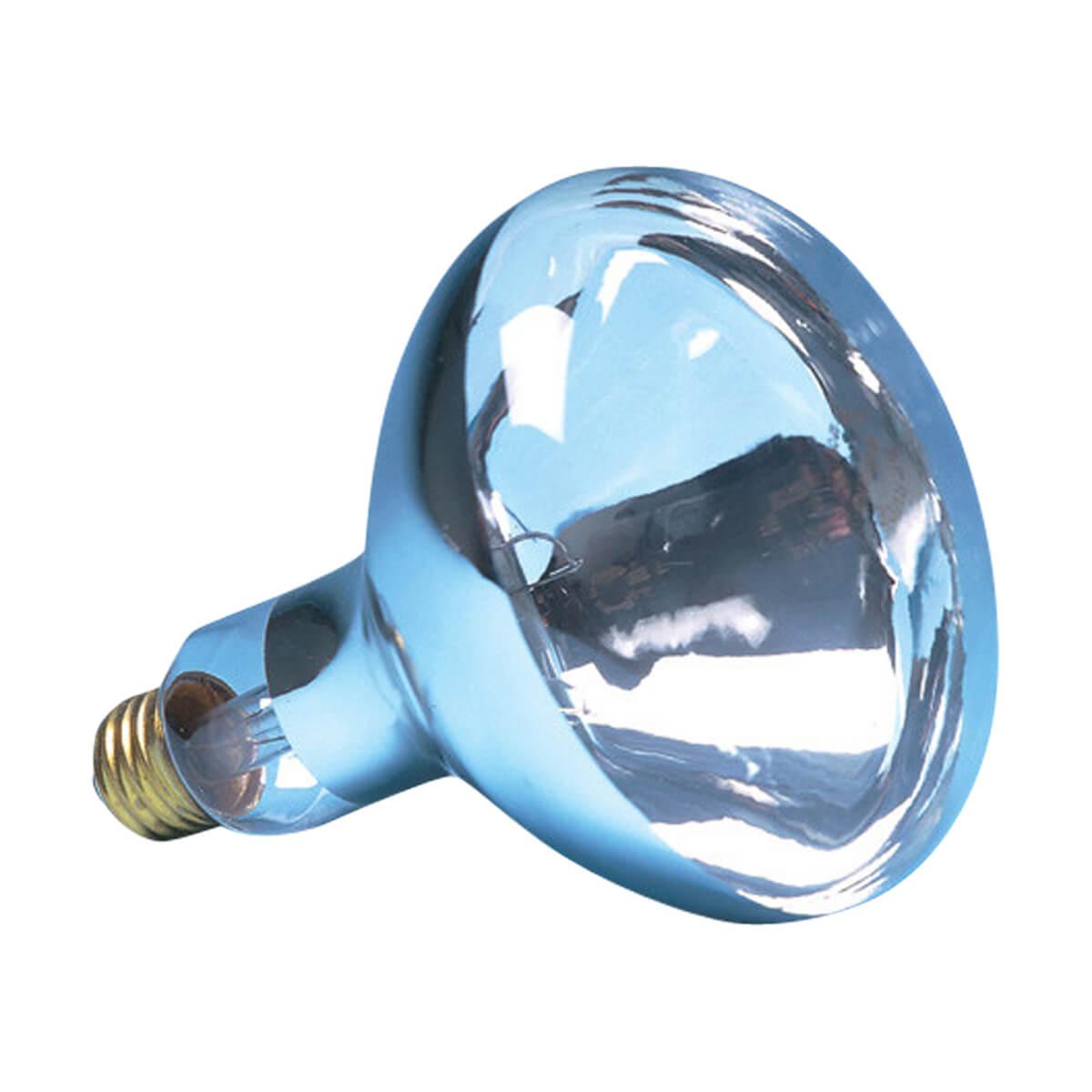 Brooder Bulb - Clear - 250W