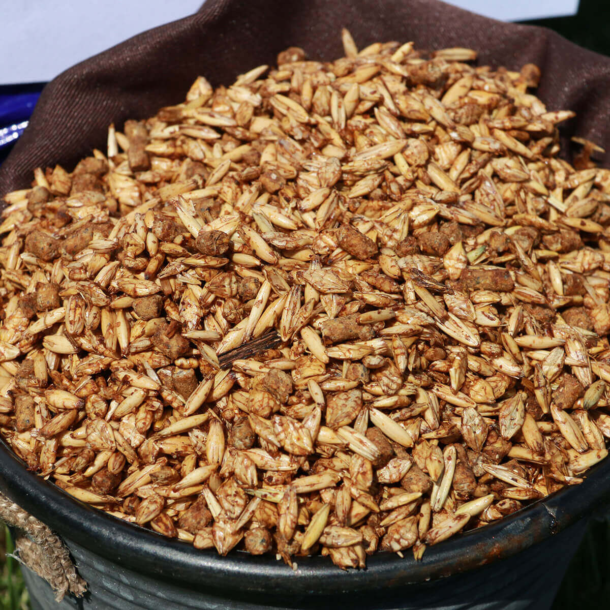 Sweet Feed - 16%  - 20 kg
