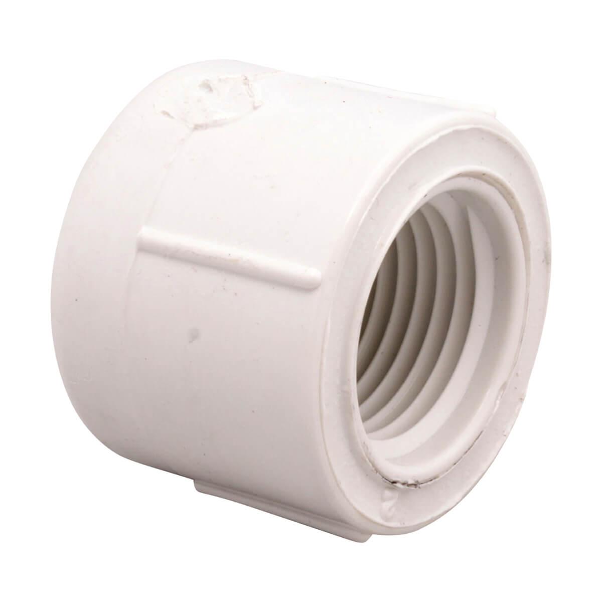 Socket - 1/2-in Cap