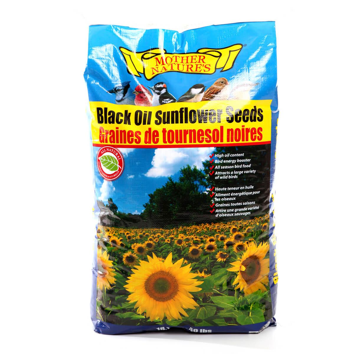 Black Oil Sunflower Seed - 18.14 kg